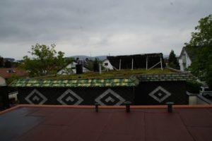 Flachdach mit einer Dachbegrünung und grüner Umrandung